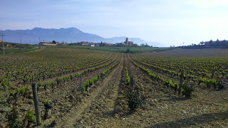 Food & Wine Tour in Northern Spain Day 6
