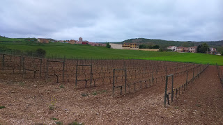 Food & Wine Tour in Northern Spain Day 3