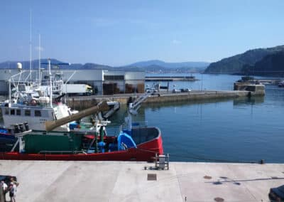 Fishing boats in the port of Getaria