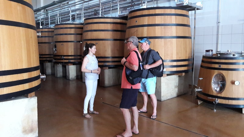 Fermentation vats at a winery