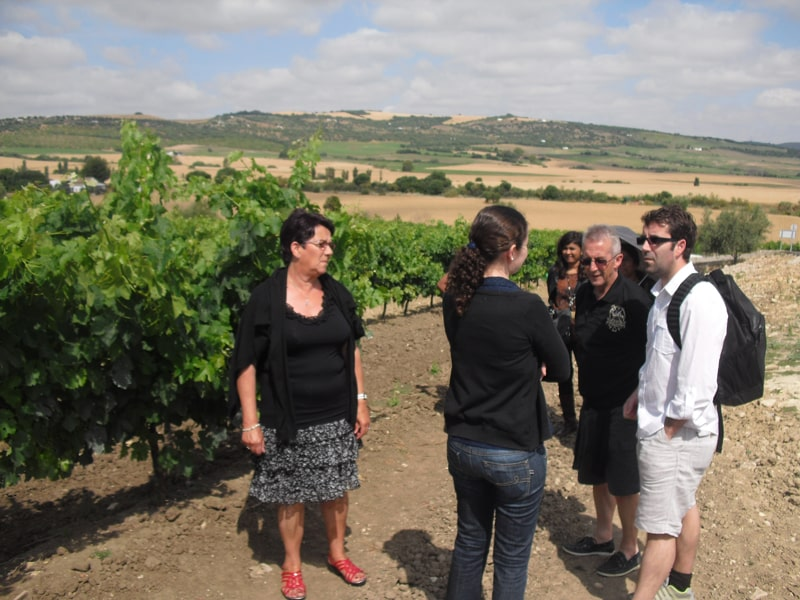 Group visiting a vineyard near Arcos de la Frontera  on our wine tour