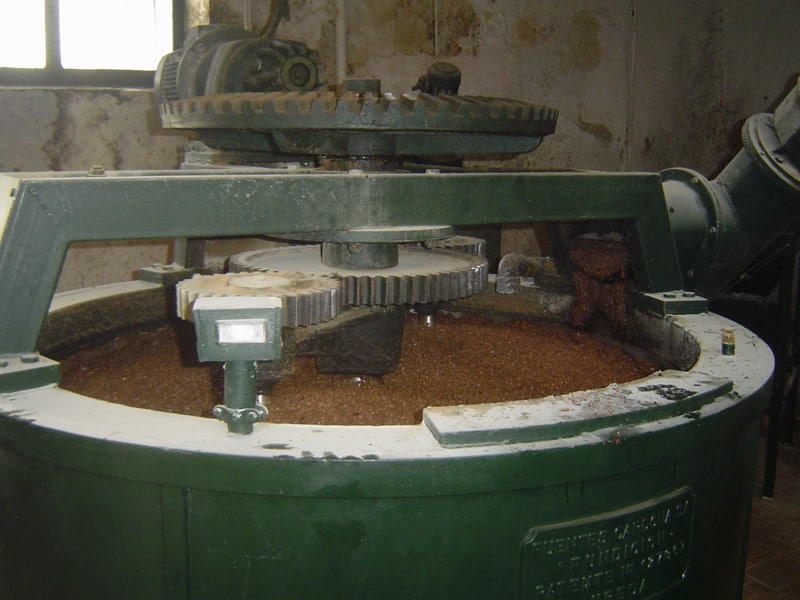 Olive paste in a malaxator in an olive mill