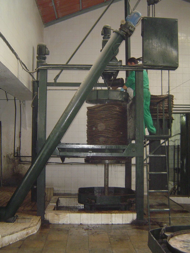 Olive paste being put onto filters before being pressed