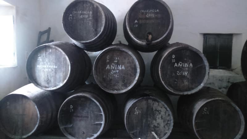 Sherry casks winery Sanlucar de Barrameda