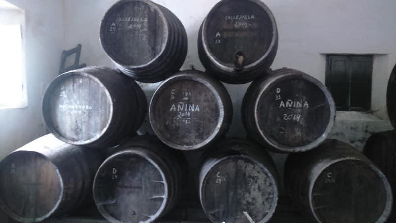 Sherry casks in a winery