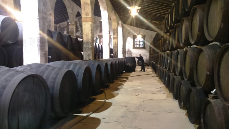 Large winery building in Jerez de la Frontera