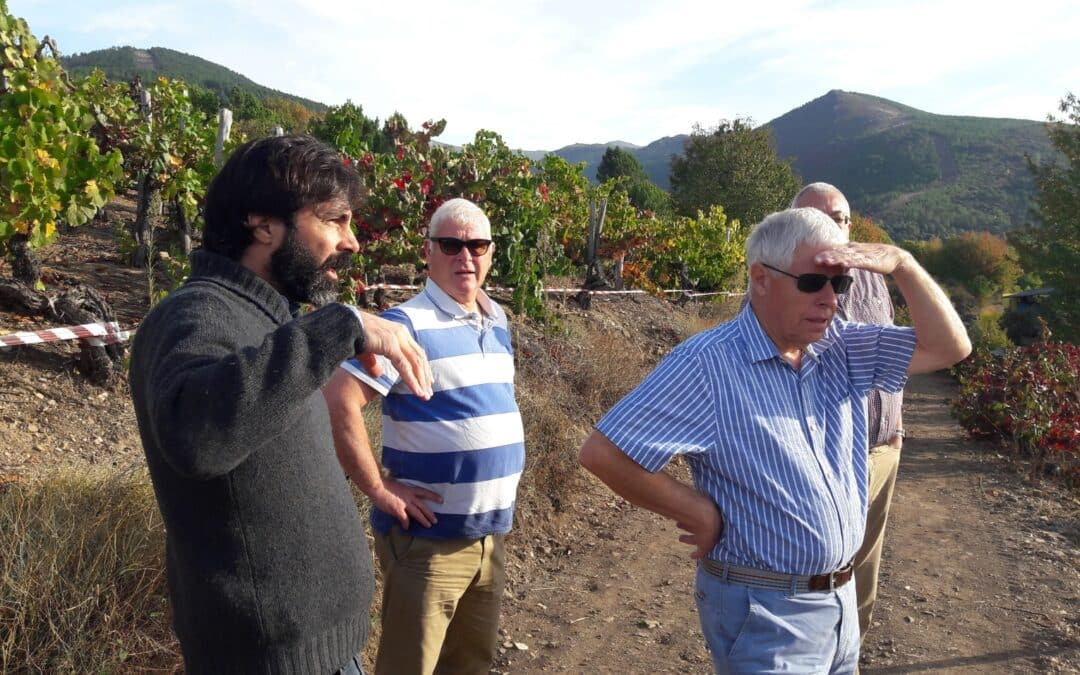 Wine Tour to Galicia Part 3